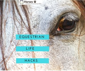 Equestrian Life Hacks Facebook iwith logo