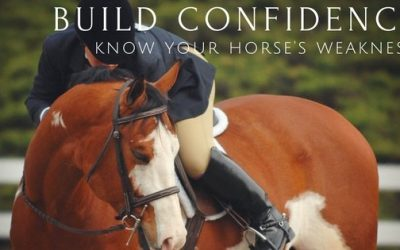 Build Confidence! Know Your Horse's Weakness