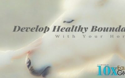 Stay Safe – Develop Healthy Boundaries With Your Horse