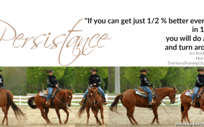 Small steps with your horse create BIG results!