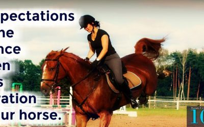Expectations Make All The Difference Between Success And Frustration With Your Horse