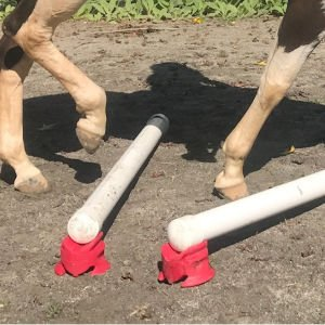 Create Balance & Co-ordination In Your Horse With Ground Poles